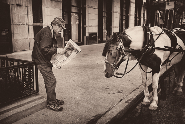Street_Scenes_Chicago_Horse_and_Carriage