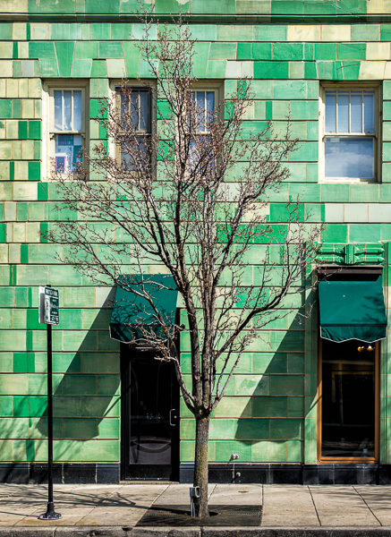 Spring Green Building with a tree, along Bryn Mawr